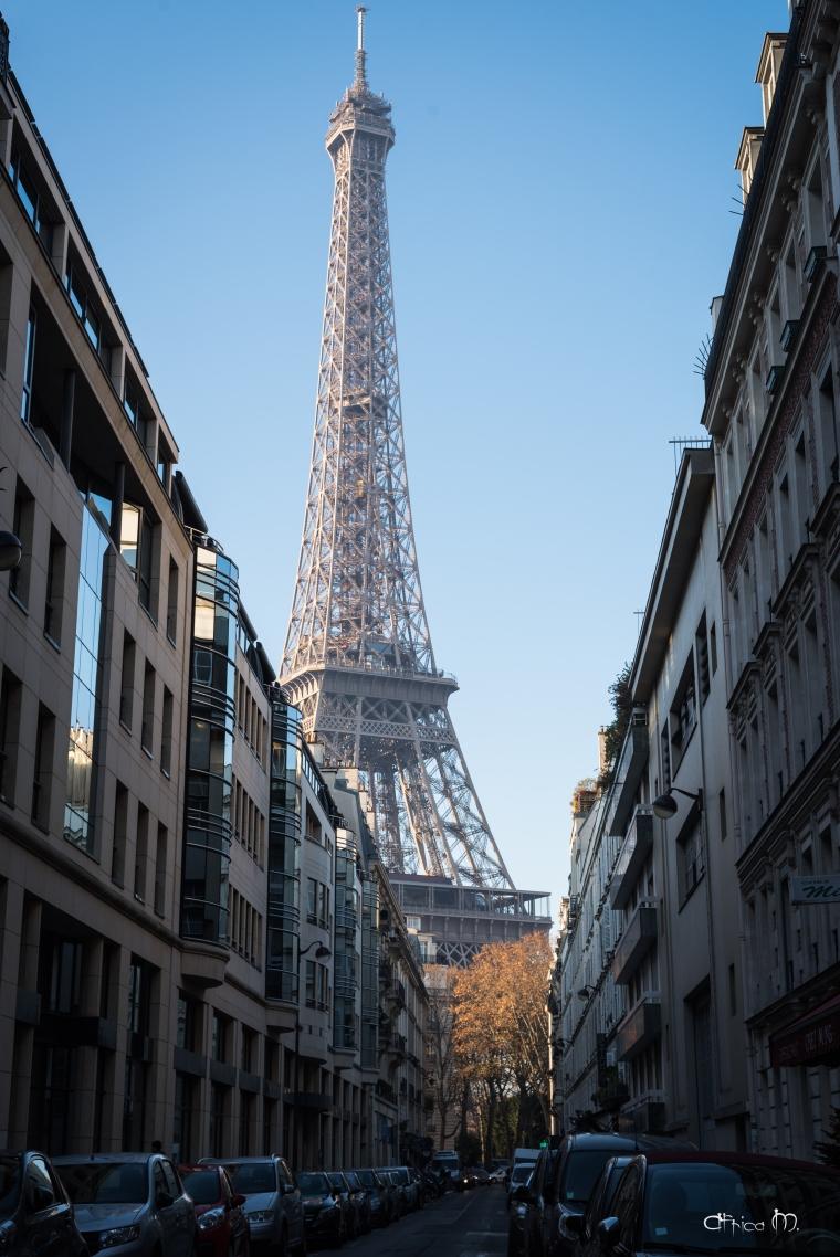 rue-de-la-universite