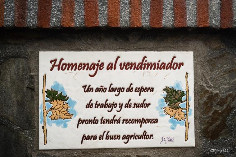 Homenaje al Vendimiador