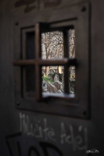 Desde la entrada al Cementerio Judio de Praga