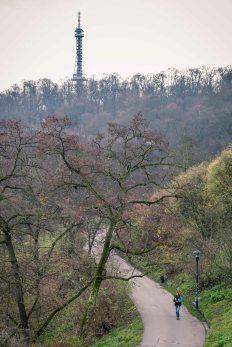 Torre de Petrinska