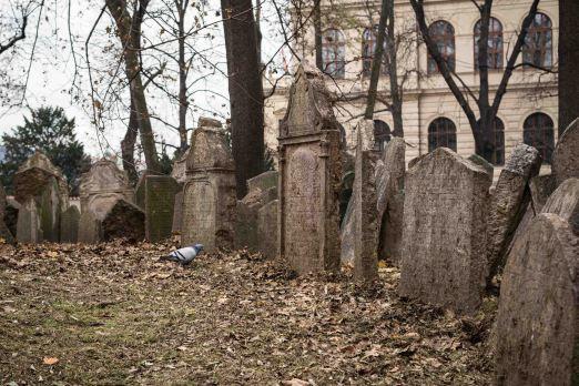 Vida en el cementerio Judio de Praga